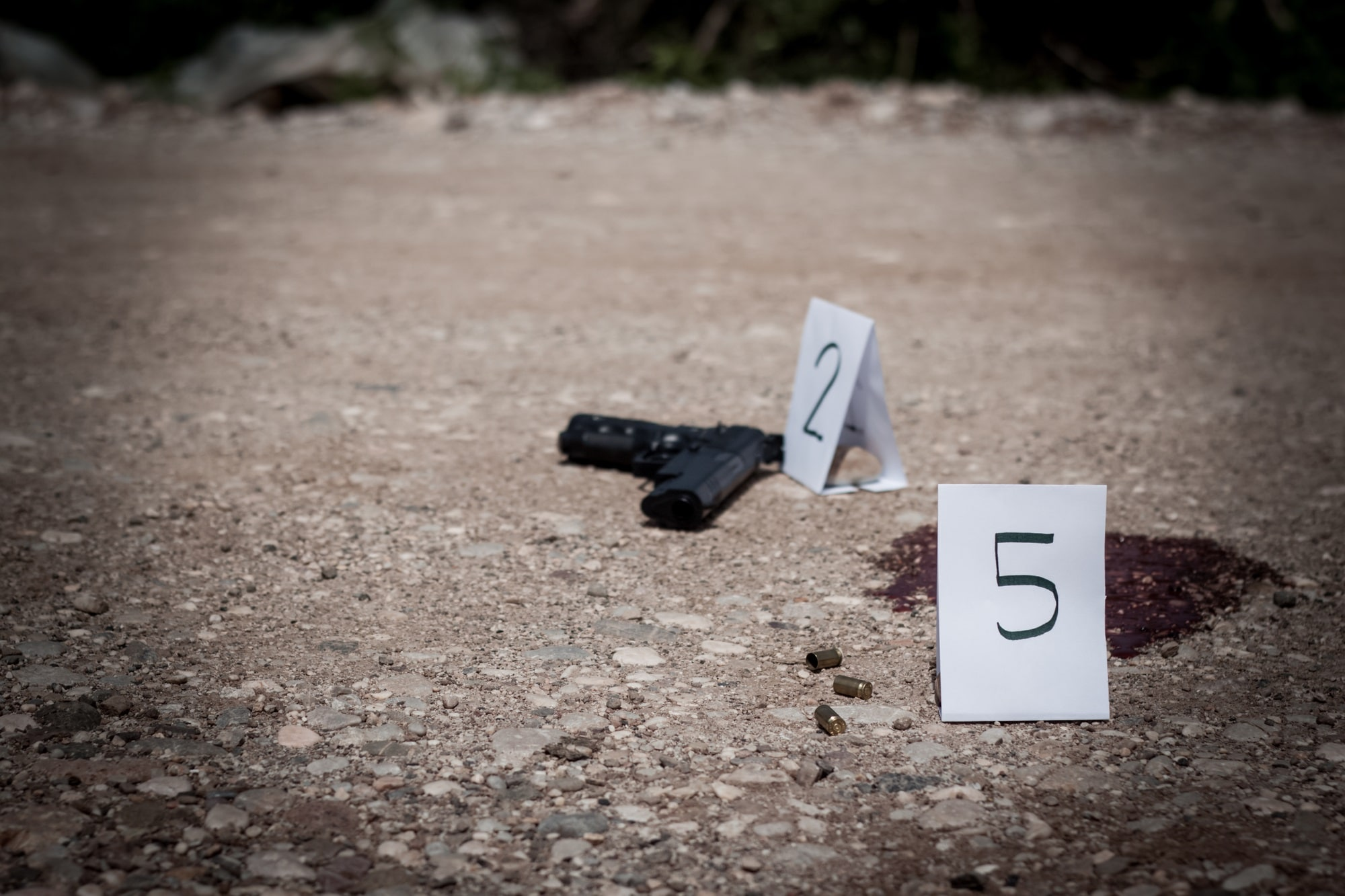 Can You Own a Firearm After A Felony